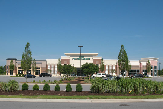 The Fresh Market Image